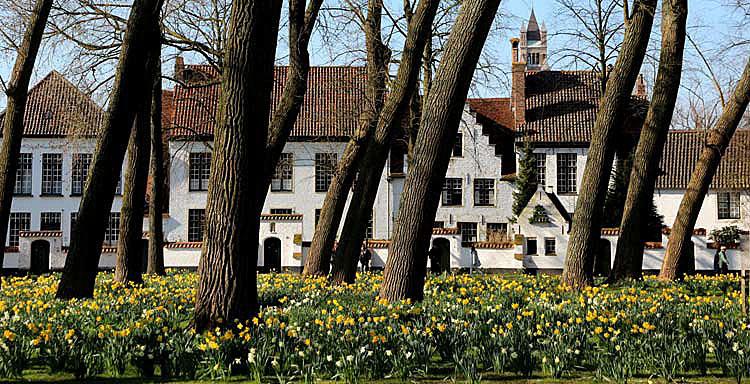 printemps en Flandres
