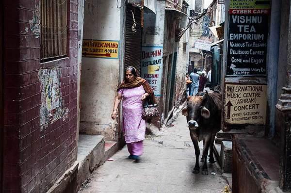 Les rues des villes: Benares 9