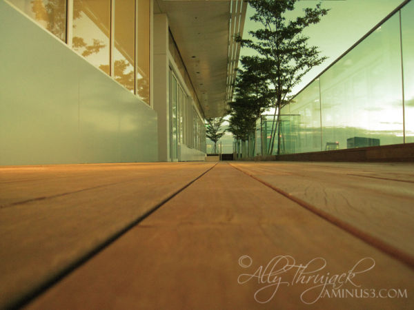 mbs, skypark, evening, tower57