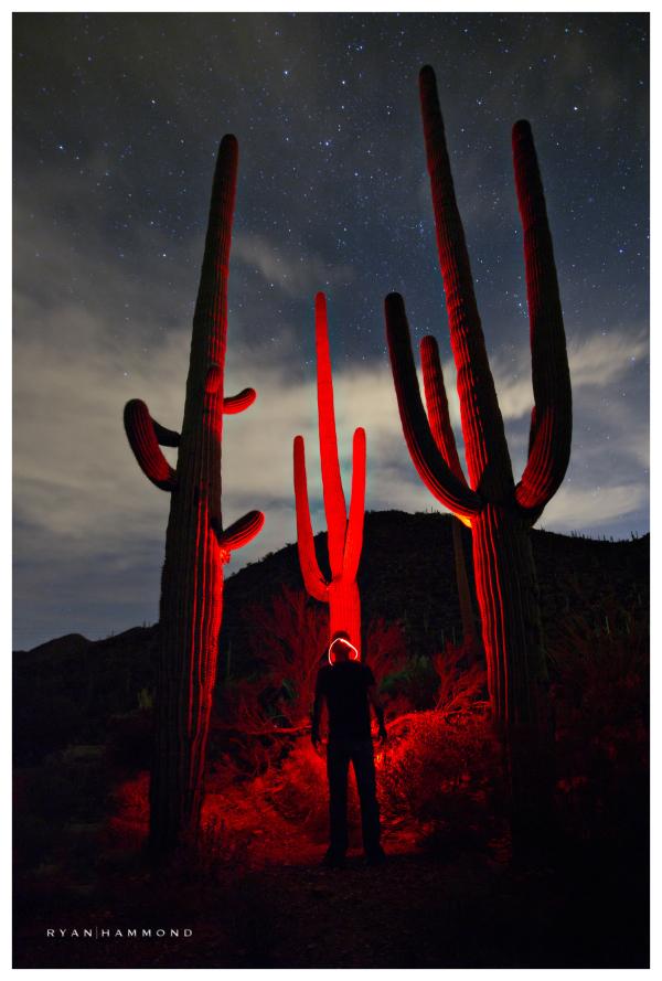 saguaros intense red alien night sky photographer