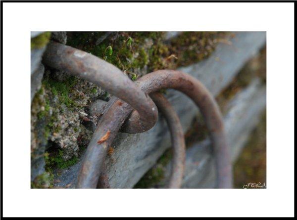 Trésor de vieux mur #8
