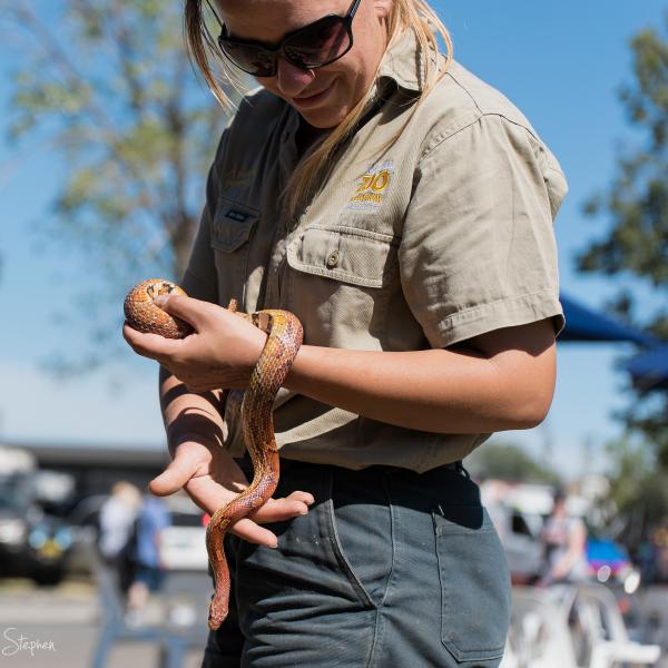 Snake handler at the Canberra Show