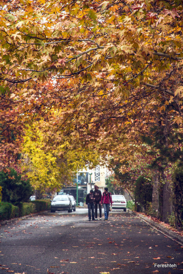 Autumn lll