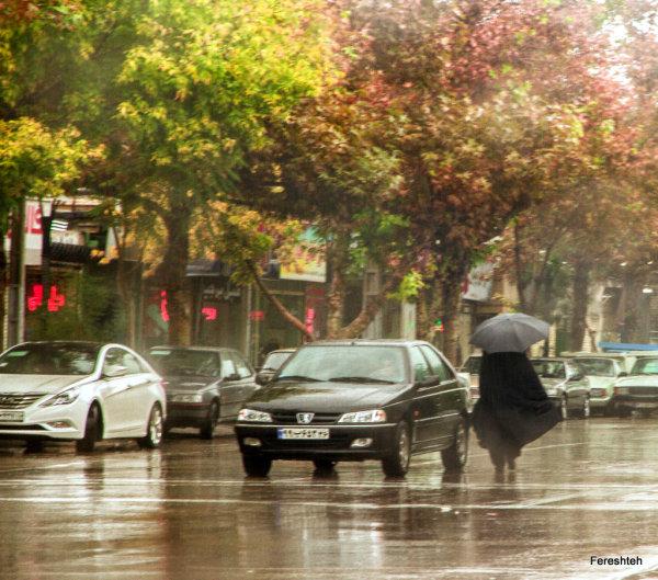 Autumn & Rain lll