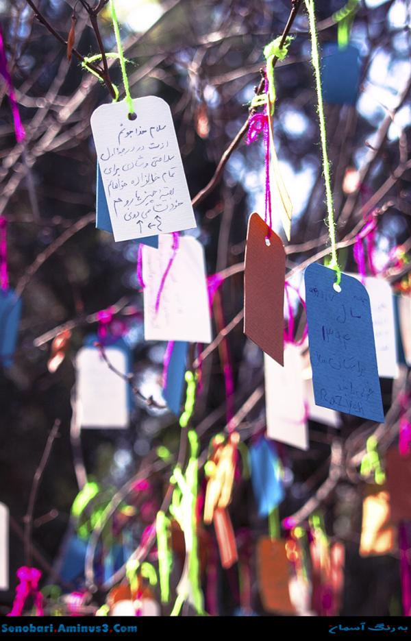 درخت آرزوها باغ نگارستان