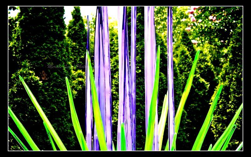 Checkwood Garden Tn