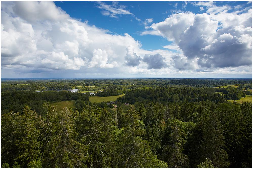 View from Suur Munamägi
