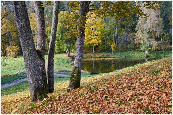 Sangaste mõisa park