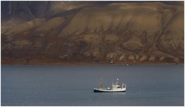Vaikses fjordis