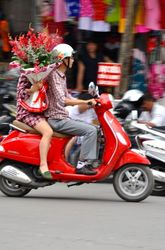 Flowers on a Bike - Hanoi