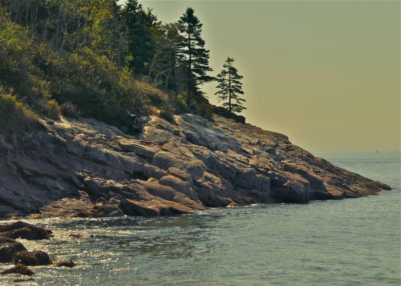 Acadia Rocks-2