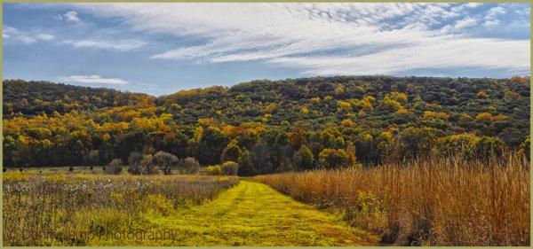 Jersey Hills