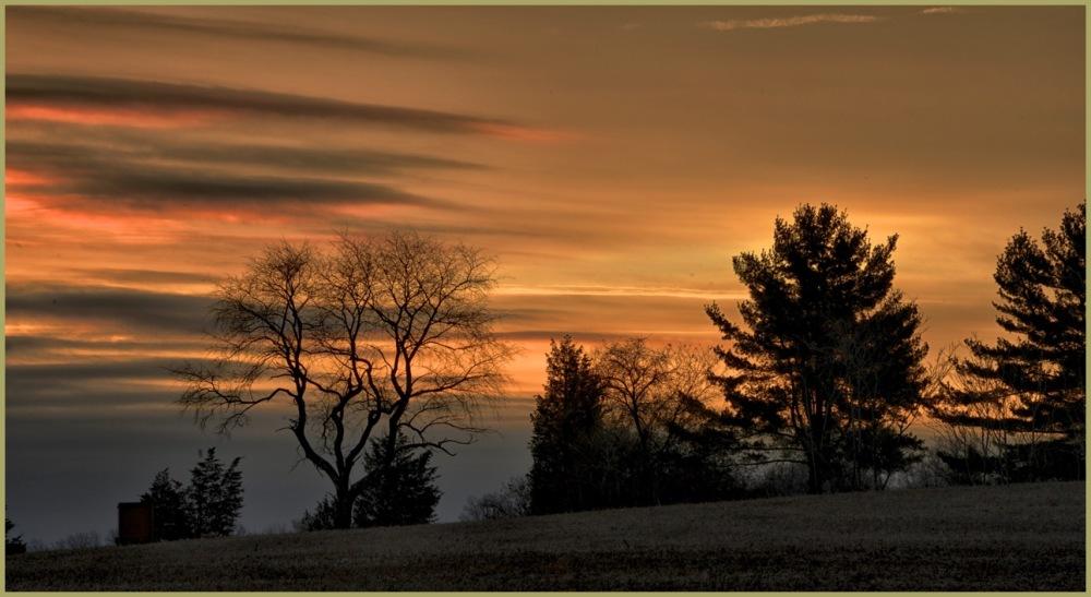 Awakening Skies
