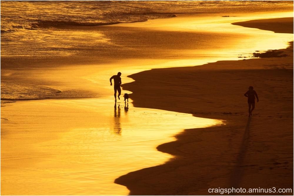 Golden Seascape Esperance Aust Craig White AUW