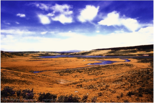 water  mountain  marshes