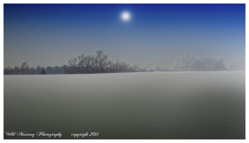 trees  field  snow  mist   moon
