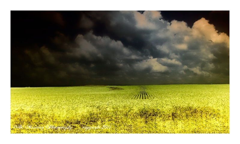 Fields   clouds   sky   storm
