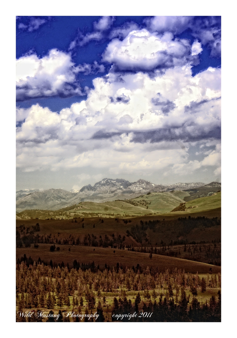 Mountains,snow,trees,Valley,clouds