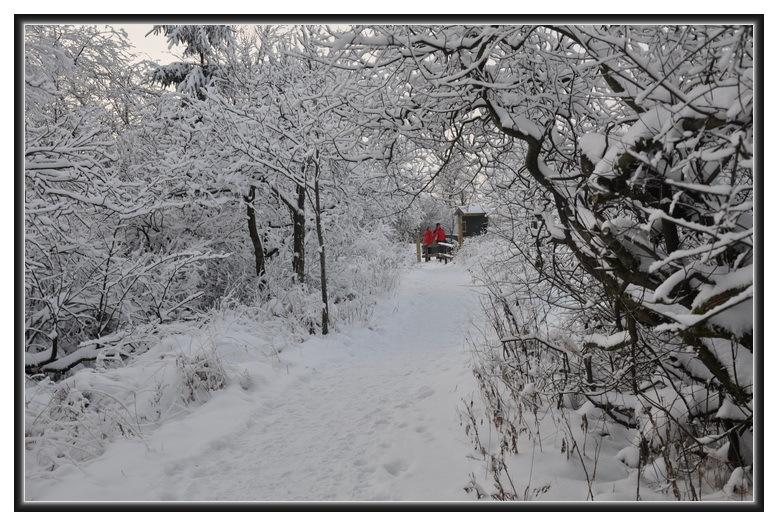 Première neige .