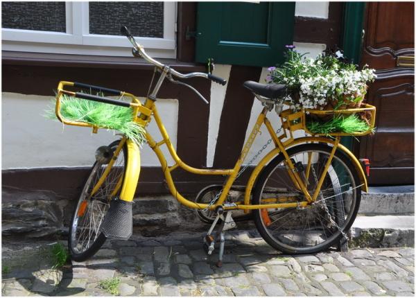 Le vélo jaune.