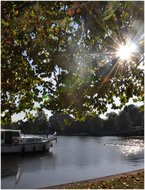 Le long de la Meuse à Visé. ( B )