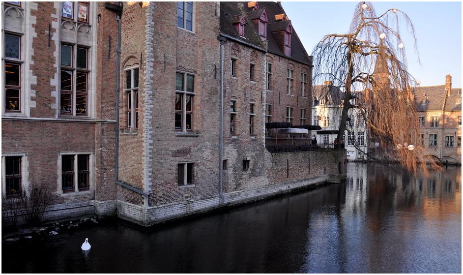 Quelques vues de Bruges. 3