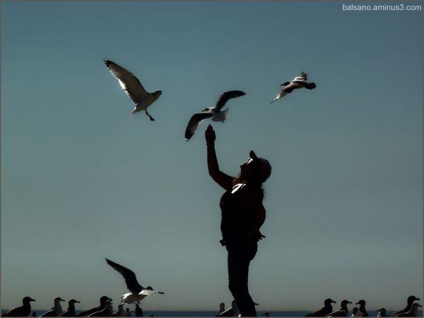human bird feeder