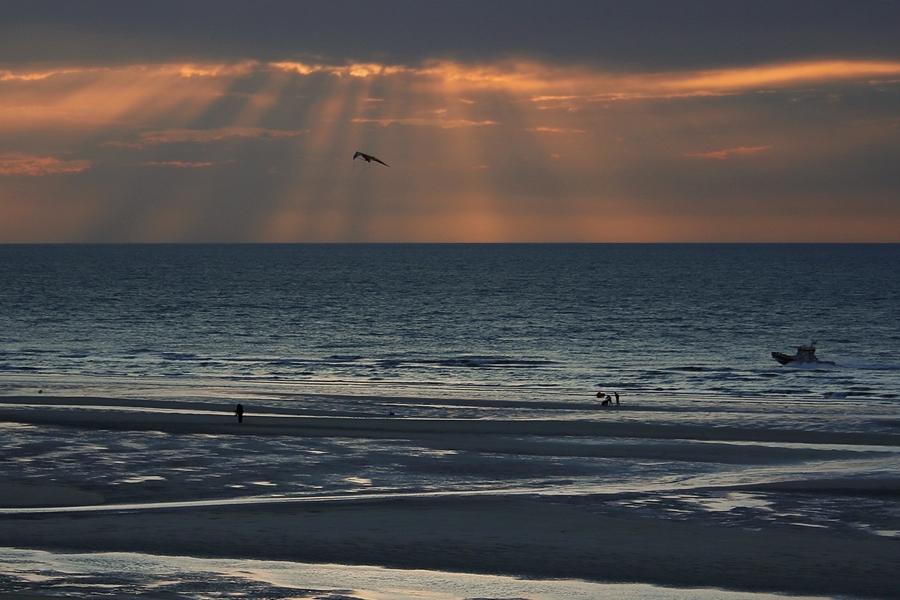 plage de la mer du nord