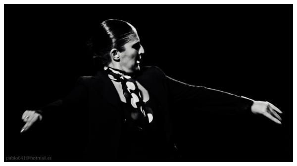 Voces Flamencas  I , (Salamanca)