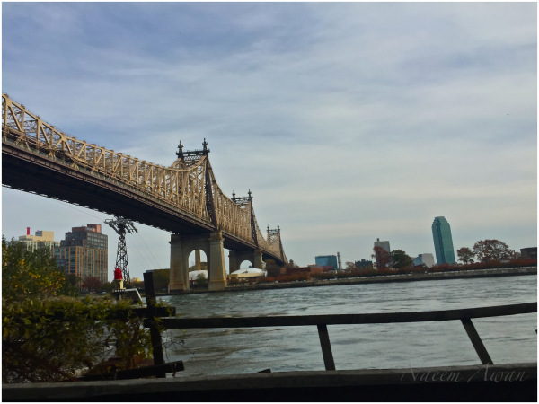 My all time favorite Queensboro