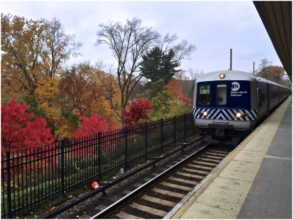 Fall colors in New York