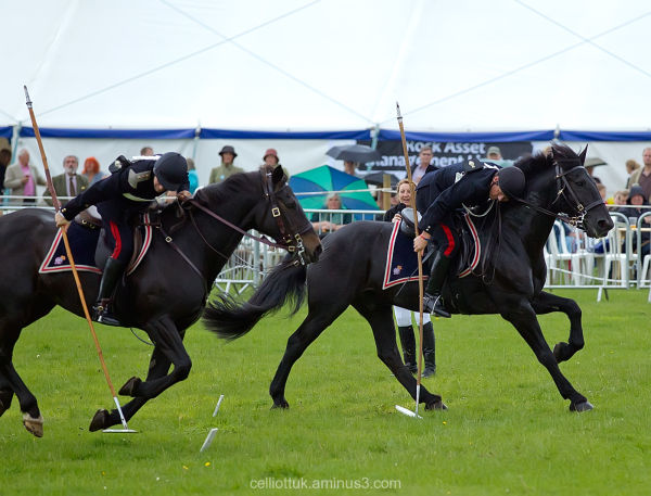 Horses-Litter Patrol-UK military style