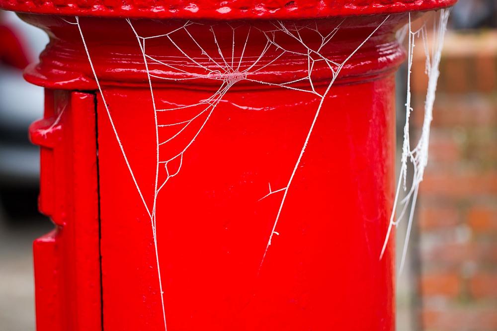 Postie's Hairnet