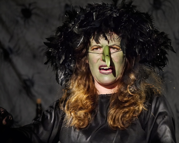 Meet the Wicked Witch