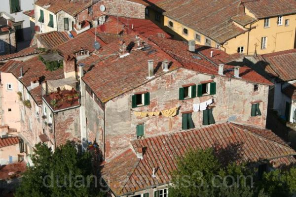 roofs of Lucca