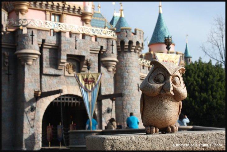 Owl @ Disney
