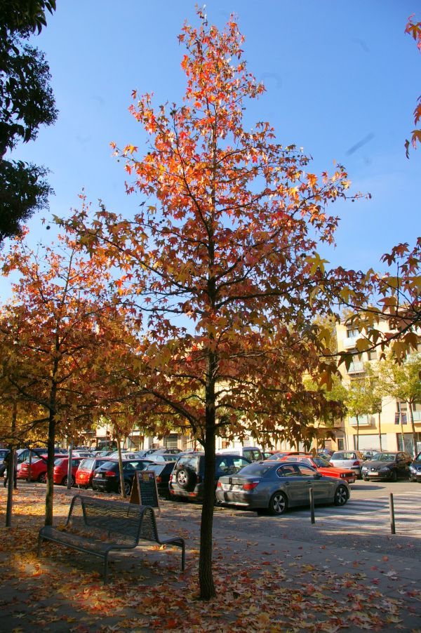 Parc del Migdia. Girona