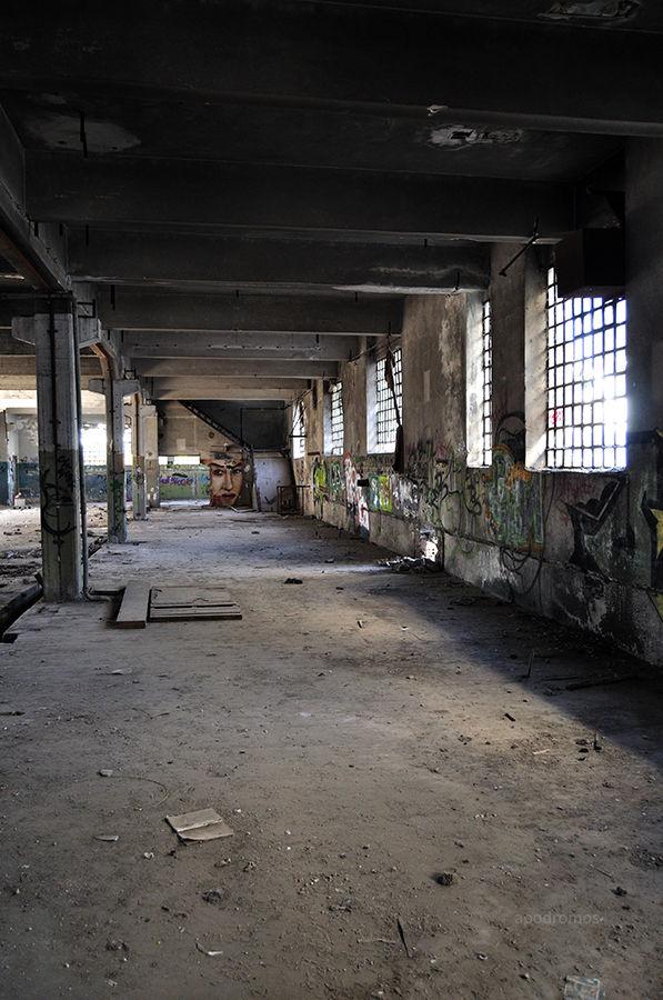 asylum 32