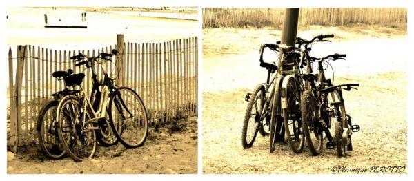 Avant... Après ou The Baby Cycle Boom !