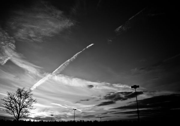 Chemical, Skies, Trails, Lights, Unatural, Death