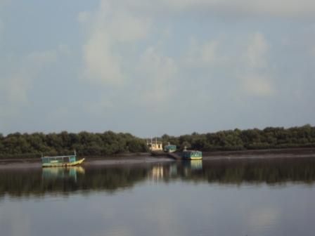 Calm waters early in the morning @ Gorai creek
