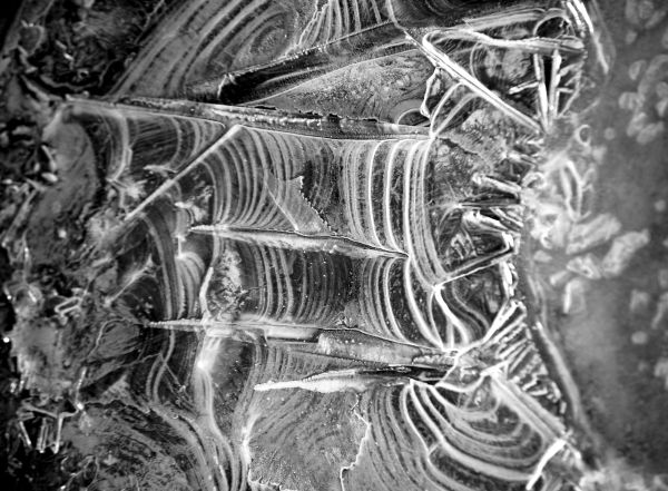 Thin spring ice