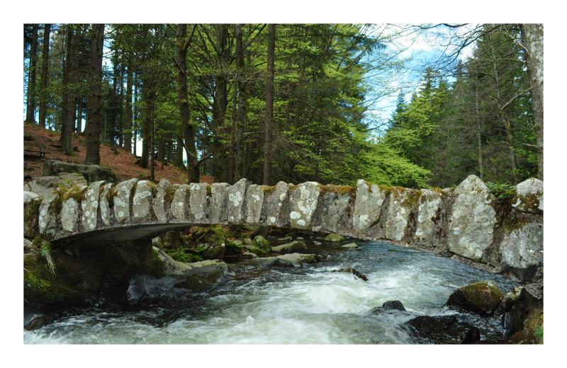 圖片標題 water under the bridge
