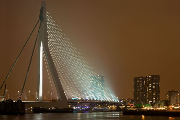 Erasmus bridge Rotterdam by night