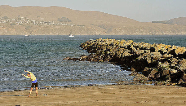 View at Bodega Head