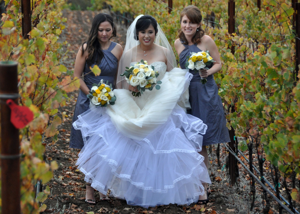 Wedding Ceremony at Vineyard