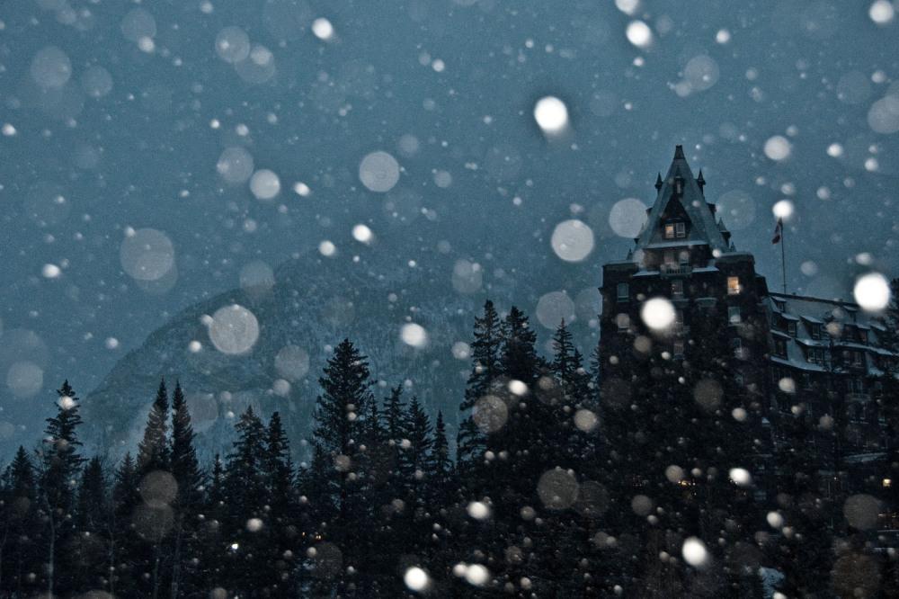 Merryy Christmas !!!