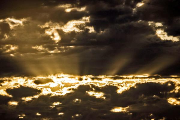 Rays ar Sunset
