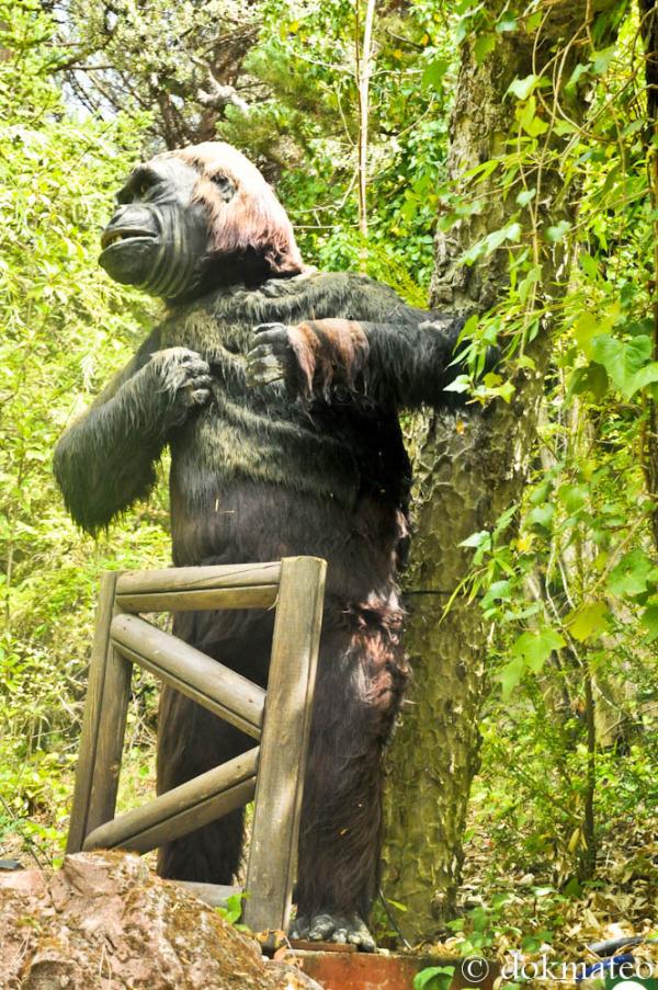 Me Gorilla