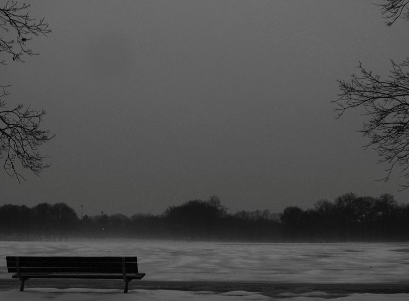 Lonely Bench in Solitude